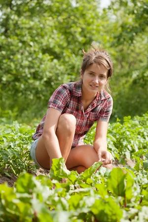 eradication: Teenager girl working in  field of beet