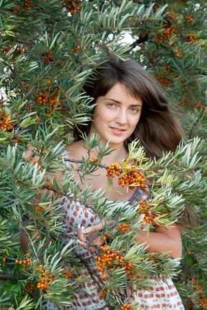 seabuckthorn: Young woman in seabuckthorn plant