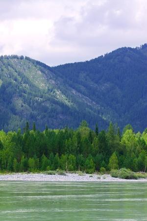 Mountains river under cloudy sky.  Katun, Altai, Siberia Stock Photo - 11480025