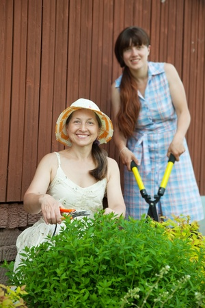 Two women cutting shrubbery at garden Stock Photo - 11479975