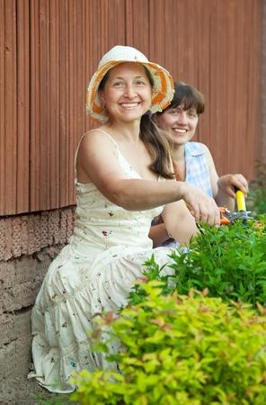 Two female  gardeners working in the garden photo