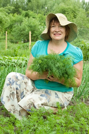 Mature woman with harvested dill in garden Stock Photo - 11636090