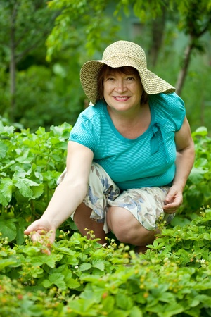 Happy mature woman in strawberry plant at garden photo