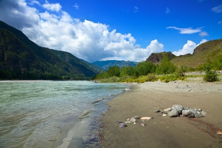 katun: Mountains river in sunny day.  Katun, Altai, Siberia