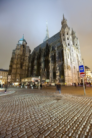 St. Stephen Cathedral in night.  Vienna photo