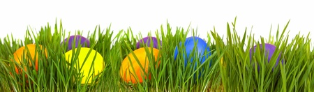 Easter border. Easter eggs in green grass over white background
