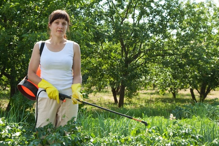pest control: Woman spraying potato plant in field