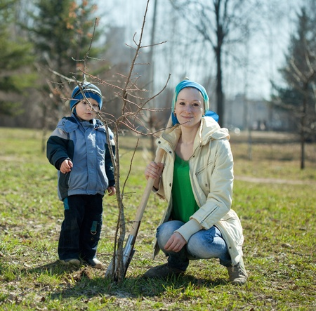 woman and boy with spade outdoors planting  tree Stock Photo - 12434620