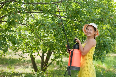Woman spraying tree branches  in garden photo