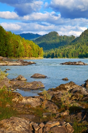 Mountains river with forest riverside.  Katun, Altai, Siberia  Stock Photo - 12436354