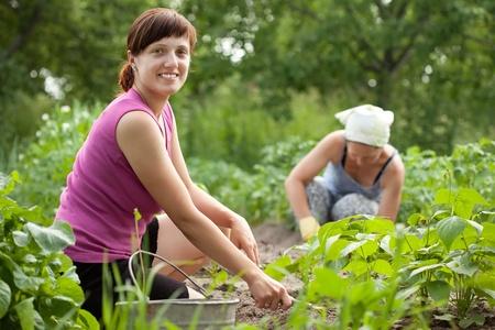 riek: Twee vrouwen die werkzaam zijn in haar moestuin