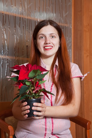 Girl with Christmas Star flowers in   flowering pot at her home photo
