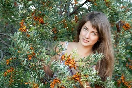 argousier: Jeune femme la cueillette argousier dans l'usine Banque d'images