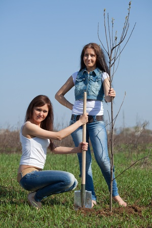 Two middle age  women planting tree outdoor photo