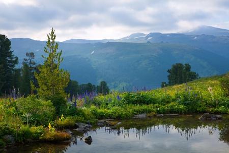 Gloomy landscape of mountain lake.   Altai, Suberia Stok Fotoğraf