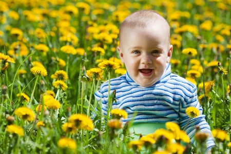 happy baby sitting in flowers meadow Stock Photo - 12791367