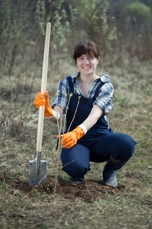 replanting: Famale farmer  planting  sprouts shrubbery in ground Stock Photo