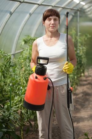 knapsack: Female gardener   with knapsack garden spray in hothouse