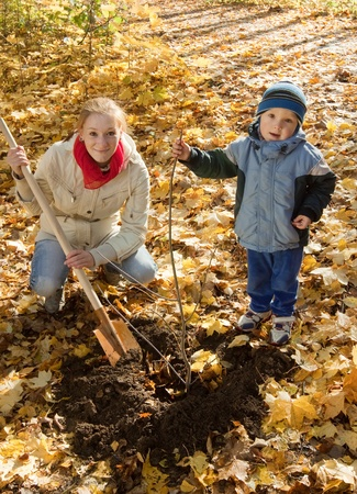 family planting tree with  spade outdoor in autumn photo