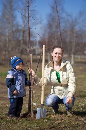 woman and boy with spade outdoors planting  tree photo