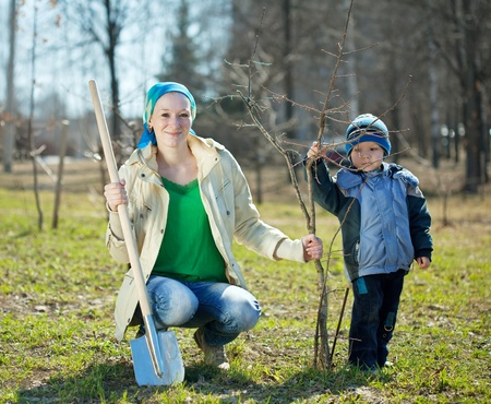 family planting tree with  spade outdoor photo