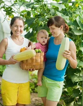 family with  harvested vegetables in greenhouse photo