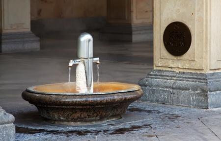 vary: warm-water mineral spring  number 8, named Prince Vaclav  Karlovy Vary