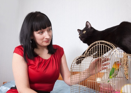 woman with  black cat and parrot in home   photo