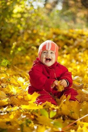 Happy toddler sitting on maple leaves in autumn park photo