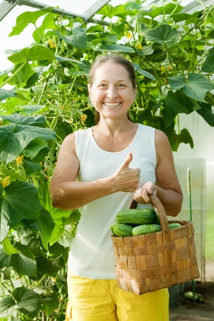 Happy woman with harvested cucumbers in the hothouse photo