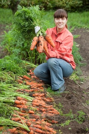young woman with carrot harvest in field photo