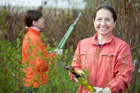 Two women cutting shrubbery at garden Stock Photo - 13570266