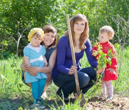 women and  baby girls planting raspberry in garden photo