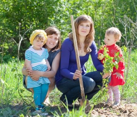 women and  baby girls planting raspberry in garden Stock Photo - 13658697