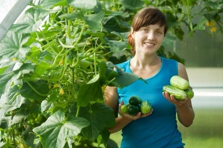 Sourire, femme la cueillette de concombre dans la serre Banque d'images - 13698002