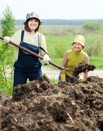 Two women works with animal manure at field photo