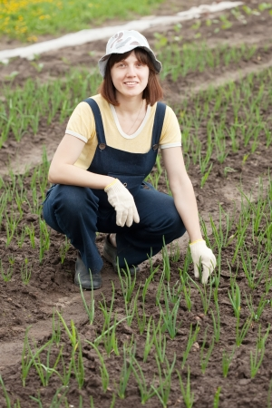Female gardener at  onion plant in spring photo