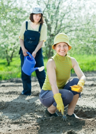 Two  women sows seeds in bed at field Stock Photo - 13801797