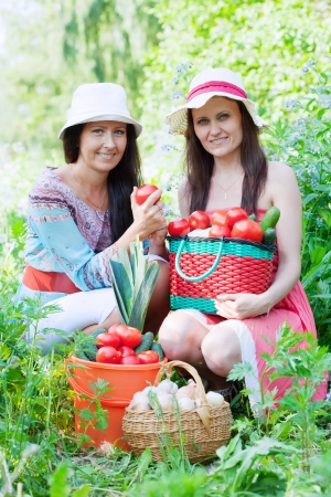Two happy women with  harvested vegetables in garden Stock Photo - 13831595
