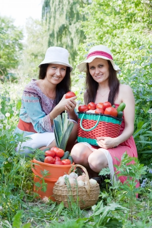 Two happy women with vegetables harvest in garden Stock Photo - 13831603