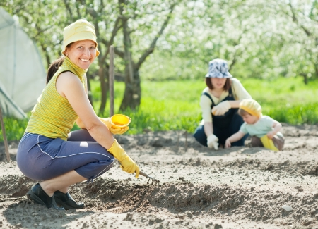 women and kid sows seeds in soil at field Stock Photo - 13982454