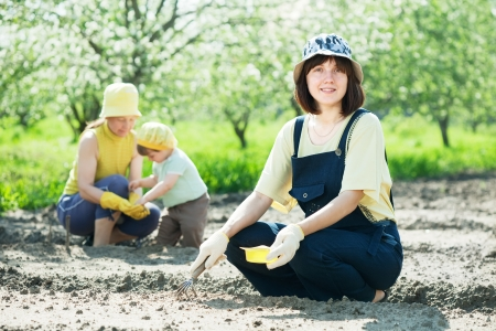 Happy women with child works at vegetables garden in spring photo