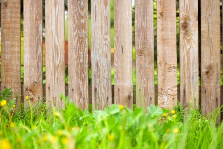 wooden fence background with green grass border photo