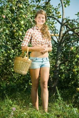 young woman is picking of apples in the orchard photo