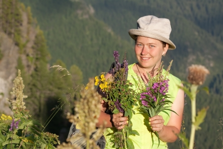 gathers: Woman gathers herbs at mountains meadow Stock Photo