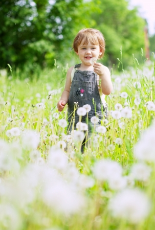 Two-year baby girl in summer dandelion plant