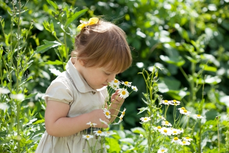 Two-year baby girl in summer daisy plant Stock Photo - 14342002