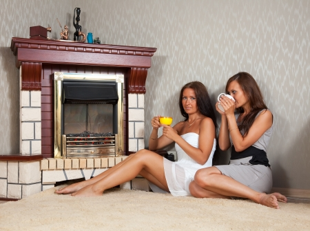 Two mid adult women near the fireplace photo