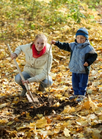 young woman with her son resetting  tree in autumn park  photo