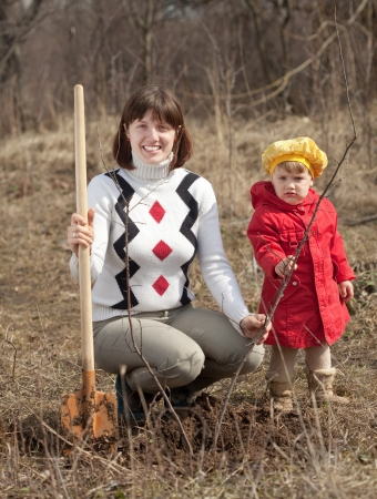 replanting:  young woman with  little daughter sets tree  in spring